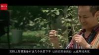 5分钟看完犯罪片《无间道2》黑帮电影史诗巨作 看吴镇宇如何执掌天下