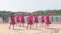 凤凰传奇广场舞健身舞自由步(3)