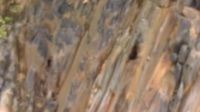 2017年7月神农架探险