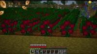 【米洛】牧场物语农场生活丨EP 13 飞一样的赚钱!!丨Minecraft 我的世界