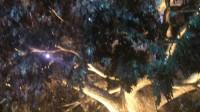 澳门永利娱乐城发财树