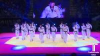 虎队全体震撼演出, 2017年韩国春川跆拳道国际公开赛开幕式
