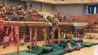 中华人民共和国第十届大学生舞龙舞狮锦标赛甲