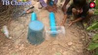 农村小伙用塑料管和垃圾篓当陷阱,2个小时,捉到一窝鸟