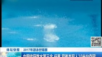 2017游泳世锦赛 中国收获跳水第三金 任茜 司雅杰双人10米台夺冠