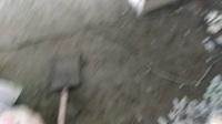 室内装修技术培训  20天学会全部装修技术   VID_20170622_115100