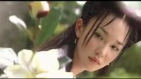 小龙女造型大PK:最美的不是李若彤