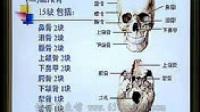 《人体解剖学(系统解剖学)》视频讲座——第02讲(共50讲)_标清