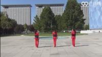 广场舞视频大全广场舞大全十六步 (3)