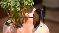 无边框设计,逼格无限,小米送给年轻人的第一款太阳镜