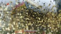 百色恒宁·奥特莱斯 宣传片(20170726版)20170726版
