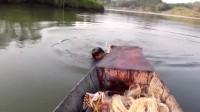 渔网撒得又圆又大, 一网下去有大收获!