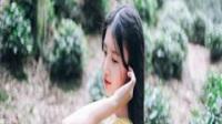 「YY小说」乡村的女人们小说全文连载,主角叫韩宝来的小说免费阅读