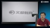 文都教育2017中西医执业助理医师冲刺串讲--中药学、方剂学(刘国强)