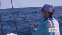 Fishing for Big Sharks with Pro Footballer Sébastien Thurière - 4K