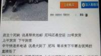 万博manbetx官方网页奇葩买家卖家秀