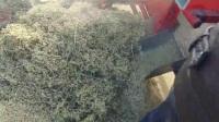 移动式80型谷物精选机工作视频