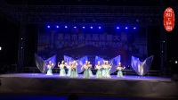嘉兴市第五届排舞大赛、暨浙江省第十一届排舞大赛选拔赛中舞蹈《天使的翅膀》荣获银奖