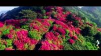 2017麻城市最新官方旅游形象宣传片