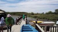 脉望摄像张掖湿地公园01