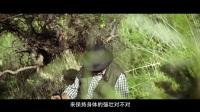 汤臣倍健23国宝藏寻踪-蛋白粉篇-C
