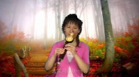葫芦丝多少钱一个葫芦丝教程29葫芦丝入门学习