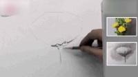 素描图片大全简单漂亮基础素描静物写生素描基础入门教程菊花1人体素描