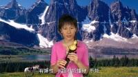 葫芦丝教学初学葫芦丝教程16葫芦丝多少钱一个