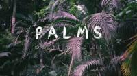 Petit Biscuit - Palms (Official Audio)