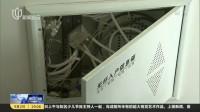 观众中来:新房始装修  电线被人偷 新闻报道 170902