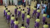 牡丹江2017第四届传统武术锦标赛郑树山太极拳队集体《40式太极拳》