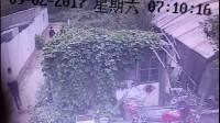 青岛土木建筑施工生死10秒钟(请求有关部门重视)
