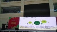 新疆种子网企业宣传发布会