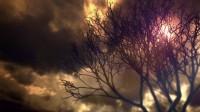 《生化危机7》黄金版+DLC宣传片