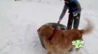 冰雪世界 爱奇艺宣传片