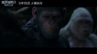 【独家片段】《猩球崛起3:终极之战》终极之战前凯撒最后的和平祈愿