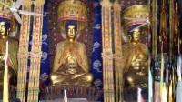 劝善菩萨17年阴历六月二十九灵山寺开光