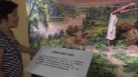 参观芜湖博物馆
