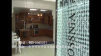 博西尼衣柜橱柜宣传片