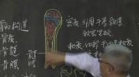 人体解剖学-中国医科大学临床医药学院公开课(崔琨主讲)1-1