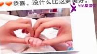 董子健升级做爸爸?刘嘉玲私下?冯绍峰和赵丽颖被拍?