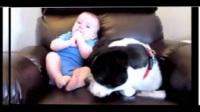 宝宝和狗狗坐在一起突然放臭臭,狗狗下一秒的举动让人哭笑不得