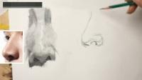 色彩静物技法精解素描入门视频教程dvd,素描教程pdf,老年国画教程视频下载素描班 北京