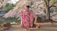 丝袜日本和服美女舞蹈 明年也一起去看樱花吧