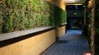 这个硅藻泥夯土墙你喜欢吗
