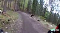 惊险!山地速降车手遇狗熊追击