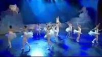 杂技芭蕾舞《天鹅湖》