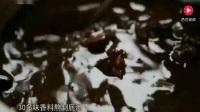 舌尖上的中国: 你见过这么奇怪的麻辣鸡做法吗, 我真是醉了!