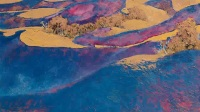 新疆画家阿布都克里木纳斯尔丁的油画作品欣赏
