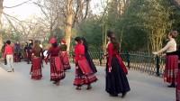 紫竹院广场舞一美女队VID20171217155621